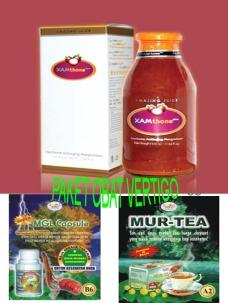 obat herbal vertigo alami